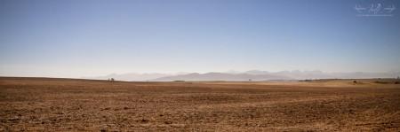 Cape Farmlands Landscape