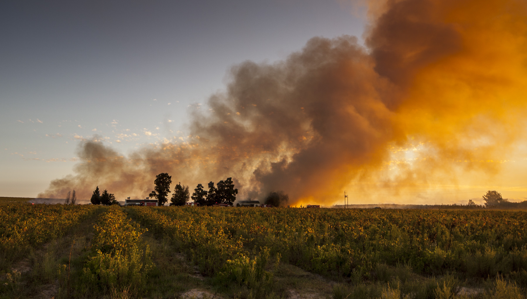 Stellenbosch Fire