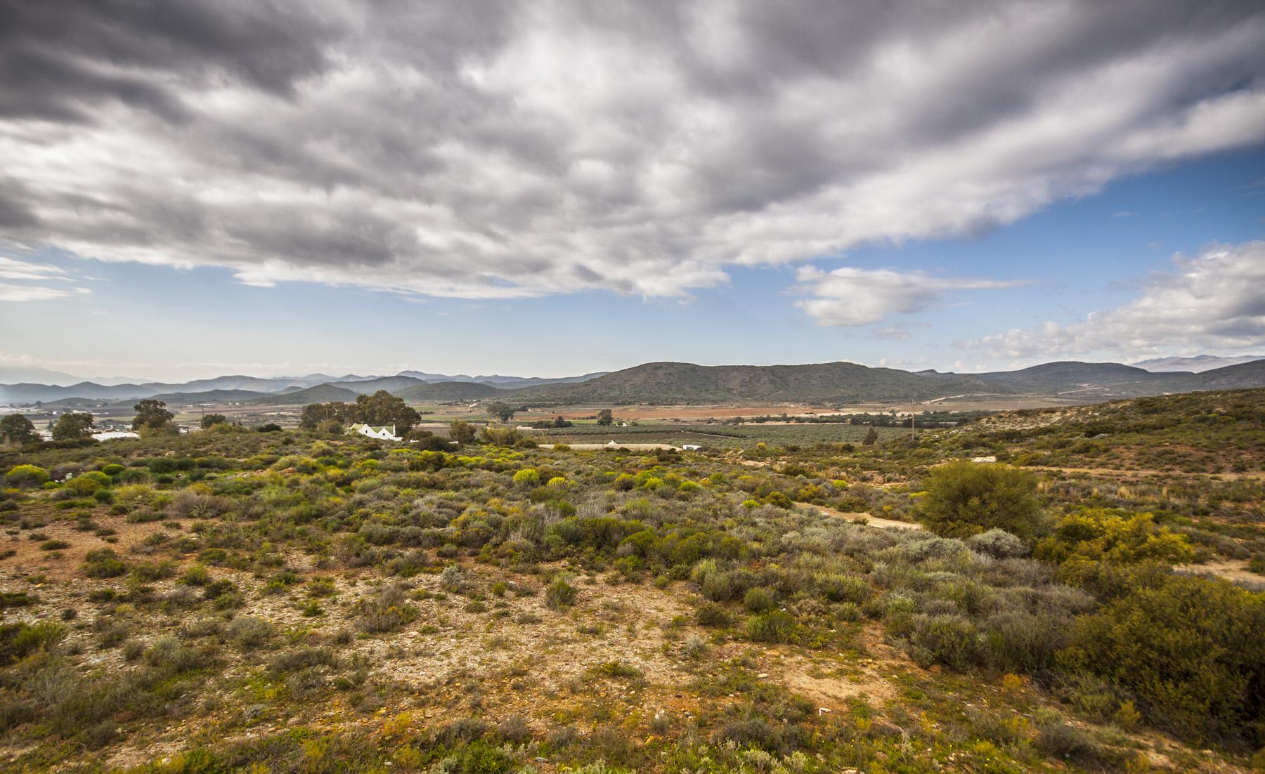 McGregor Landscape