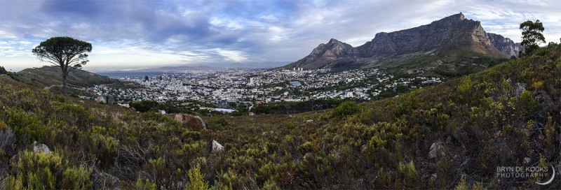 cape-town-panorama