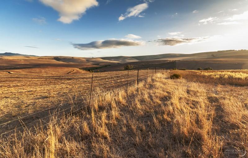 Morning Overberg Landscape