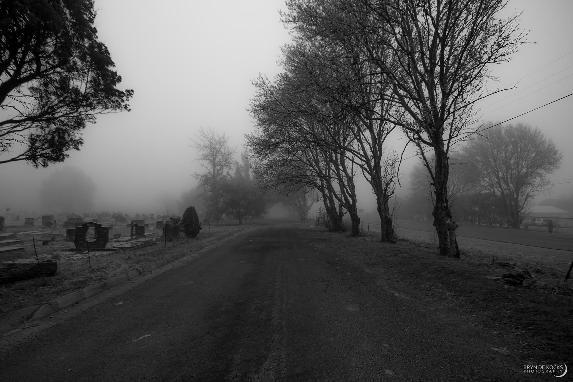 dark misty graveyard