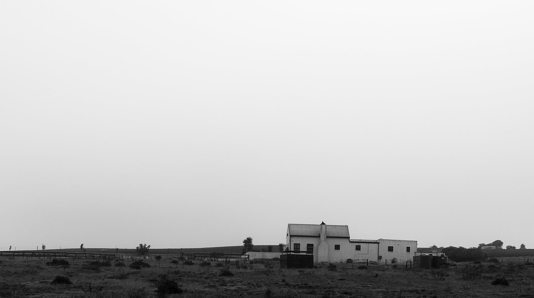 west-coast-landscape