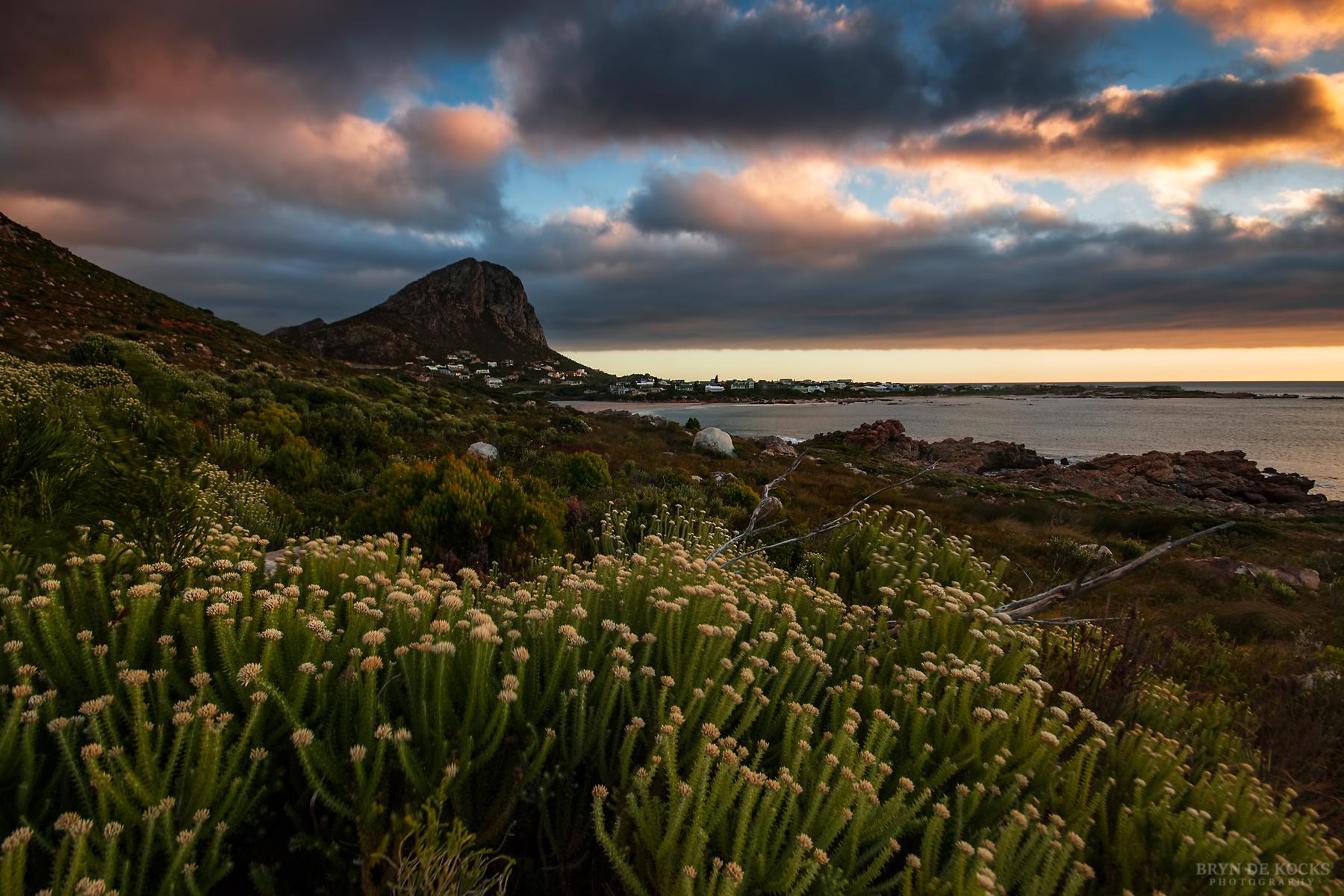 Rooi Els Landscape