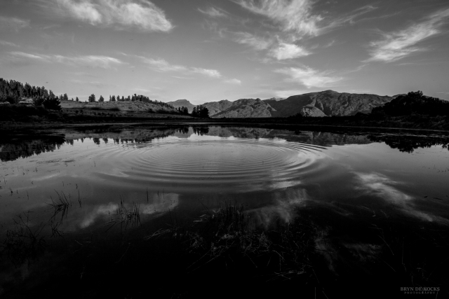 Ceres Landscape in Black and White