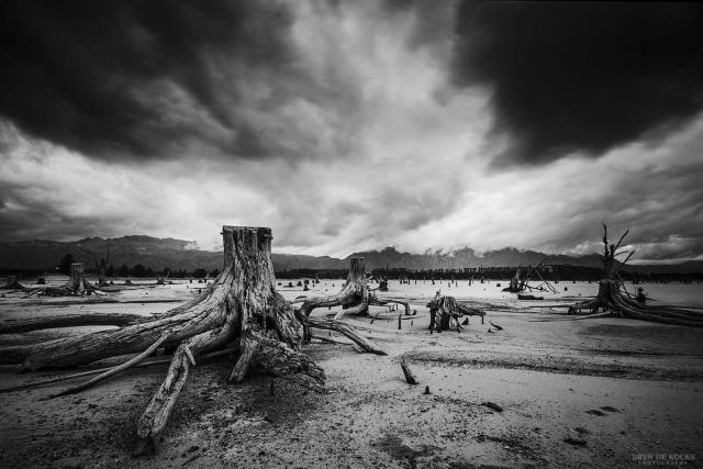 Dead Landscape in Western Cape