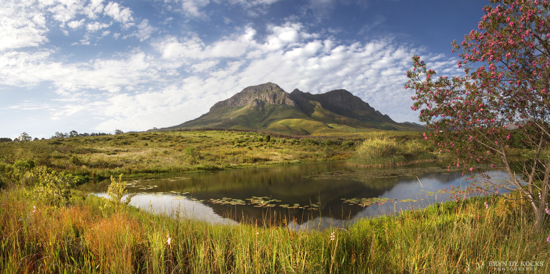 helderberg mountain landscape