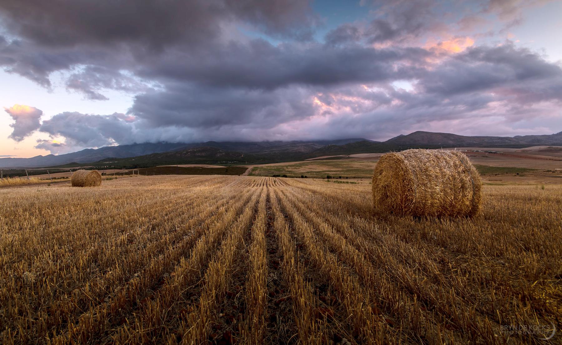Overberg Sunset Landscape