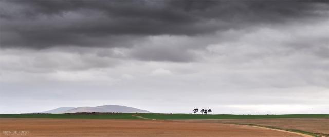 Stellenbosch Landscape