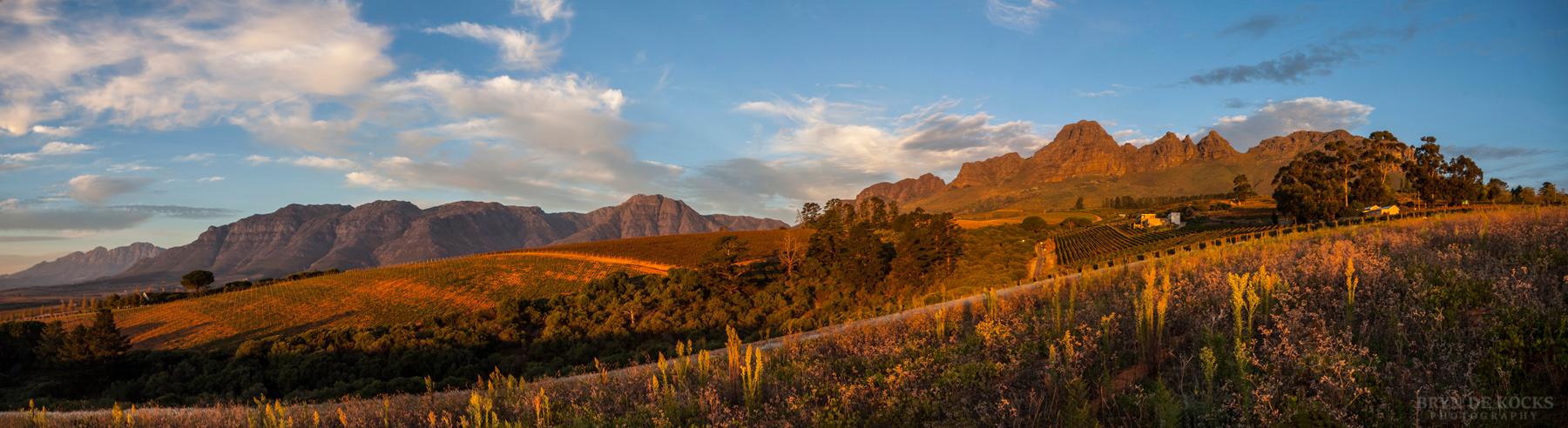 Stellenbosch Panorama