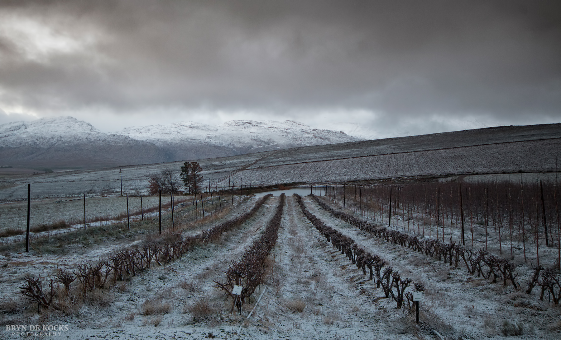 Snow near Matroosberg