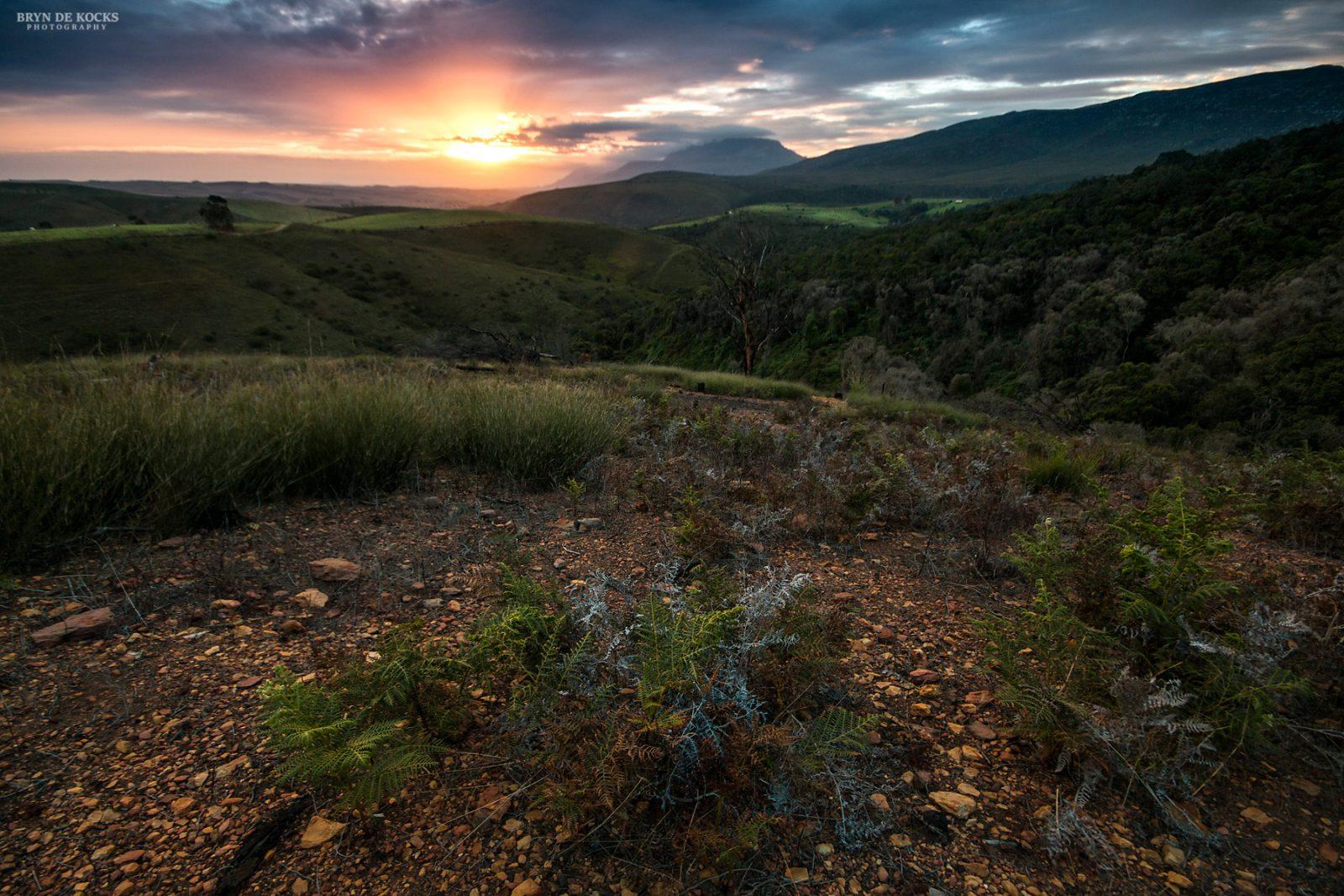 sunset-landscape-grootvadersbosch